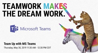 Microsoft Teams Cat